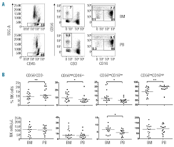 multifunctional human cd56low cd16low natural killer cells are the