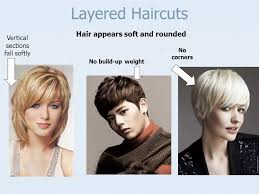 how to cut hair with rounded corners in back hair cutting reference points are used to establish design