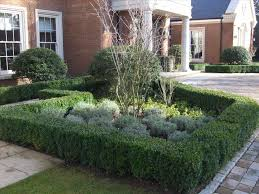 Front Yard Landscaping Ideas No Grass - grass no grass landscaping ideas on pinterest front yard garden