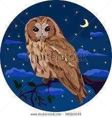 cute brown owl big yellow moon stock vector 303168989 shutterstock