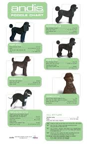 poodle grooming chart click here to find out more http