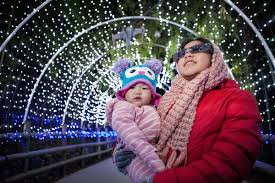 Zoo Lights Dates by Fresno Zoo Lights Photos By Craig Kohlruss Photography