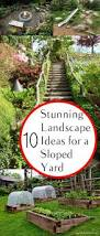 Front Yard Landscape Ideas by Best 25 Sloped Backyard Landscaping Ideas Only On Pinterest