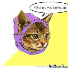 Mad Kitty Meme - mad kitty by 3466mel meme center