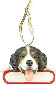 raining cats and dogs bernese mountain ornament