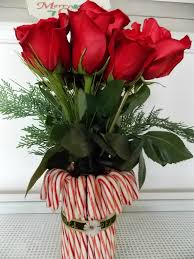 life between potato and rice candy cane vase affordable gift