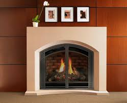 free standing gas fireplaces gallery home fixtures decoration ideas