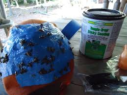 Homemade Fly Trap by How To Create A Diy Outdoor Sticky Fly Trap Paris Farmers Union