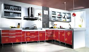 Individual Kitchen Cabinets Kitchen Simple Acrylic Kitchen Cabinets Interior Decorating