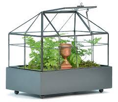 amazon com h potter terrarium for plants glass container 148