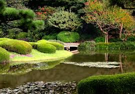 10 best flowers in japan when and where to view them hub japan