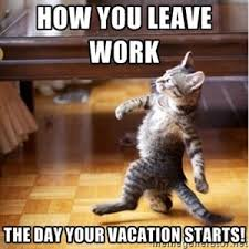 Meme Vacation - how you leave work the day your vacation starts walking cat