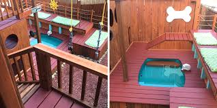Dog Backyard Playground by Turns His Backyard Into A Huge Playground For His Dogs