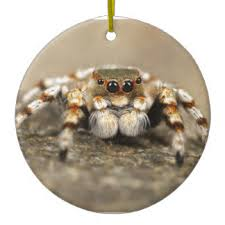 jumping spider christmas tree decorations u0026 ornaments zazzle co uk