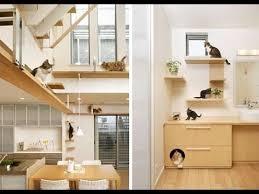 Pet Room Ideas | the cutest pet room ideas youtube