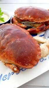 cuisiner un tourteau le dormeur un crabe qui charme comme un tombeur de