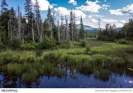 New Hampshire Landscapes images New hampshire landscape stock photo 25832124 megapixl jpg