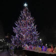 chicago tree lighting 2017 the 2017 millennium park christmas tree picture of millennium