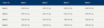 United Oversized Baggage Fees Singapore Airlines Baggage Fees 2011 Airline Baggage Fees Com