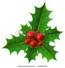 New Year S Day Decoration by Thin Christmas Wreath Without Decoration Round Stock Vector
