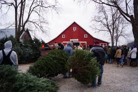 boone county farm honored as best christmas tree farm in indiana