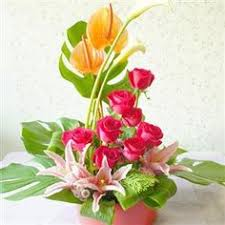 flower delivery free shipping free flower delivery in dubai done by tada https www tada ae