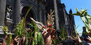palm fronds for palm sunday palm sunday 2014 dates traditions and history of the beginning