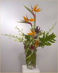 compare flower prices bulk flowers wholesale contemporary