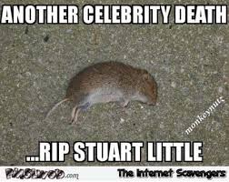 Little Meme - rip stuart little meme pmslweb