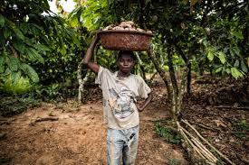 inside big chocolate u0027s child labor problem