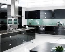 modern kitchen cabinets baton rouge tags modern kitchen cabinets
