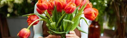 Florists Ftd Florist Directory Ftd Florist