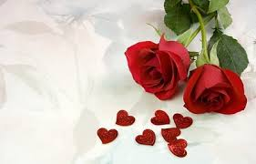 two roses and heartshaped picture free stock photos in image