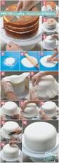 459 best cake ideas images on pinterest cake ideas pig cupcakes