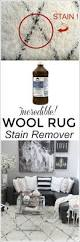 incredible wool carpet stain remover u0026 cleaning tip setting for four