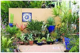 Small Garden Decorating Ideas Garden Succulent Garden Decorating Design Ideas Using