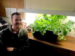 what is the best lighting for growing indoor best grow lights for growing vegetables indoors the