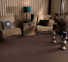 carpet ideas for living rooms home design