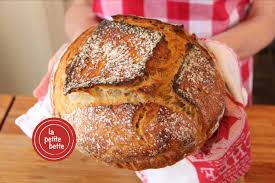 Cuisine Trop Petite by Perfect Bakery Style Homemade Bread No Knead Youtube