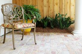 Best Plant For Mosquito Repellent Mosquito Repellant Plants New Orleans Landscaping Tips
