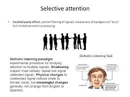 What Is Cocktail Party Effect - attention definition concentration of mental effort or energy on