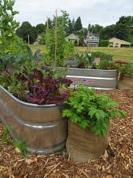 fall and winter gardening in containers free is full seattle