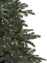 balsam hill color clear lights nordmann fir narrow artificial christmas tree balsam hill