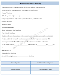Sample Durable Power Of Attorney Form by Irrevocable Power Of Attorney Form Sample Forms