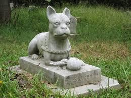 pet funeral service u2013 funeral com