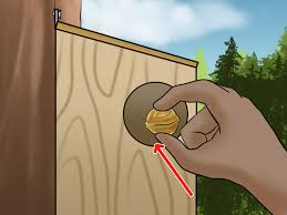 how to build a squirrel house 14 steps with pictures wikihow