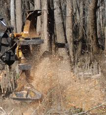 tigercat tip reduce forestry equipment fuel consumption