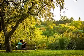 Mn Landscape Arboretum by Minnesota Landscape Arboretum Engagement Photos Allison Joseph