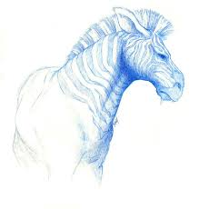 zebra sketch by sshhr1274 on deviantart