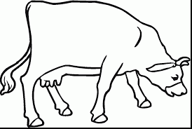 surprising printable cow coloring pages with cow coloring pages